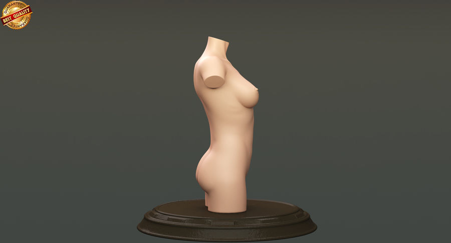Female Torso royalty-free 3d model - Preview no. 5