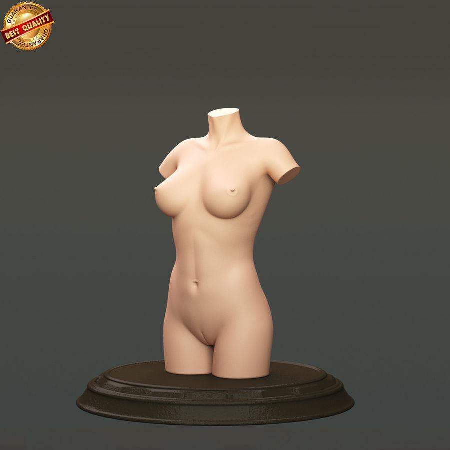 Female Torso royalty-free 3d model - Preview no. 1