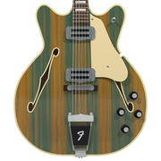 Guitar: Fender Wildwood / Coronado: Wood Stripes Finish 3d model