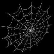 거미줄 3d model