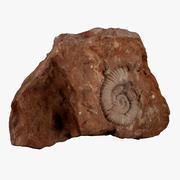 Fossil rock 3d model