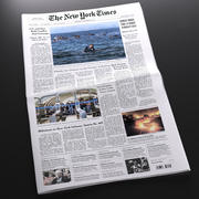 Ny tidningen New York Times 3d model