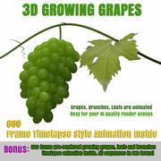 Animação de modelo 3D de uva animada 3d model