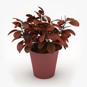 Blumentopf 3d model
