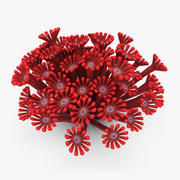 Poritidae Coral Red (Animado) 3d model