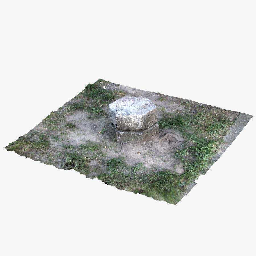 Каменная трава 3d Scan royalty-free 3d model - Preview no. 1