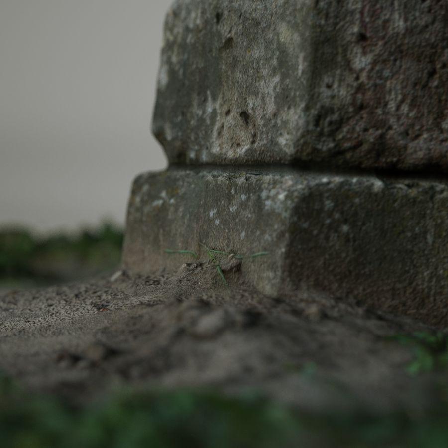Каменная трава 3d Scan royalty-free 3d model - Preview no. 9