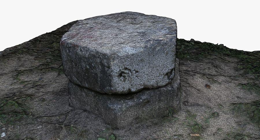 Каменная трава 3d Scan royalty-free 3d model - Preview no. 29