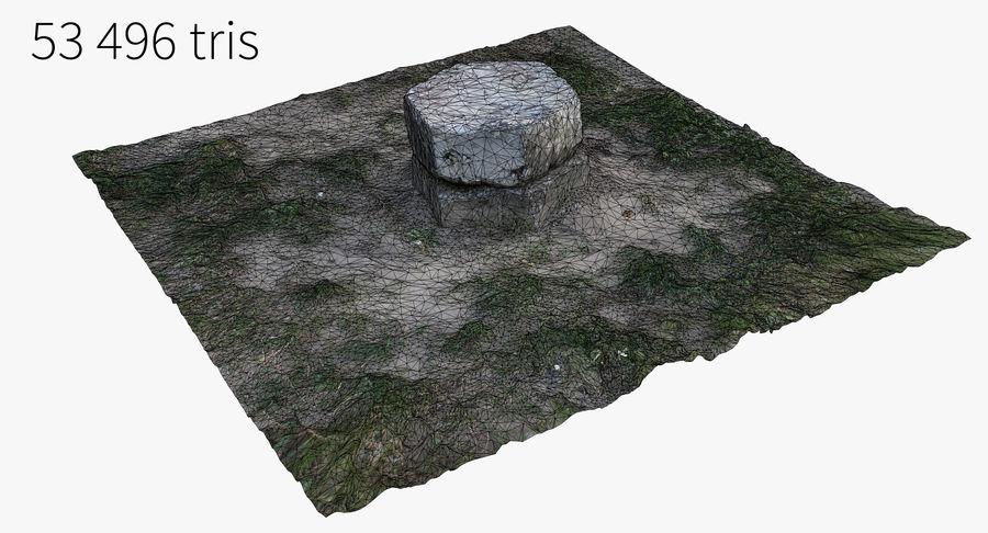 Каменная трава 3d Scan royalty-free 3d model - Preview no. 25
