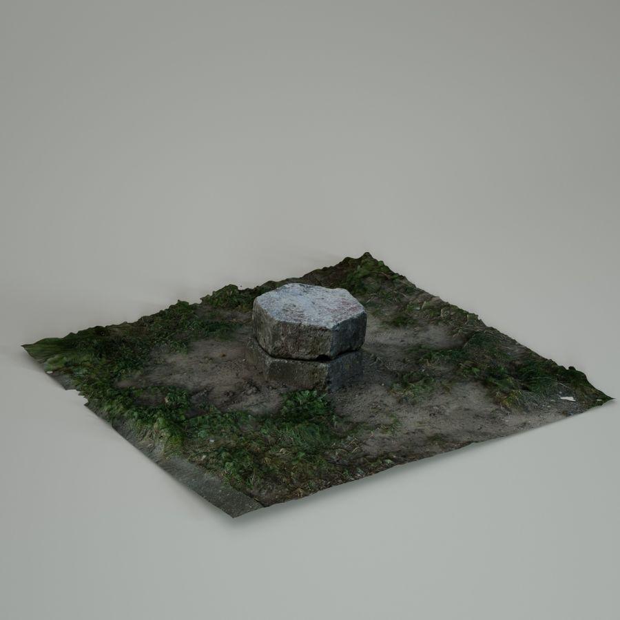 Каменная трава 3d Scan royalty-free 3d model - Preview no. 19