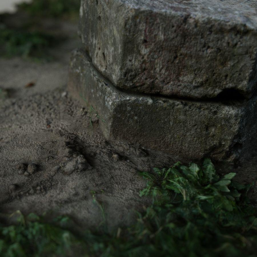 Каменная трава 3d Scan royalty-free 3d model - Preview no. 16