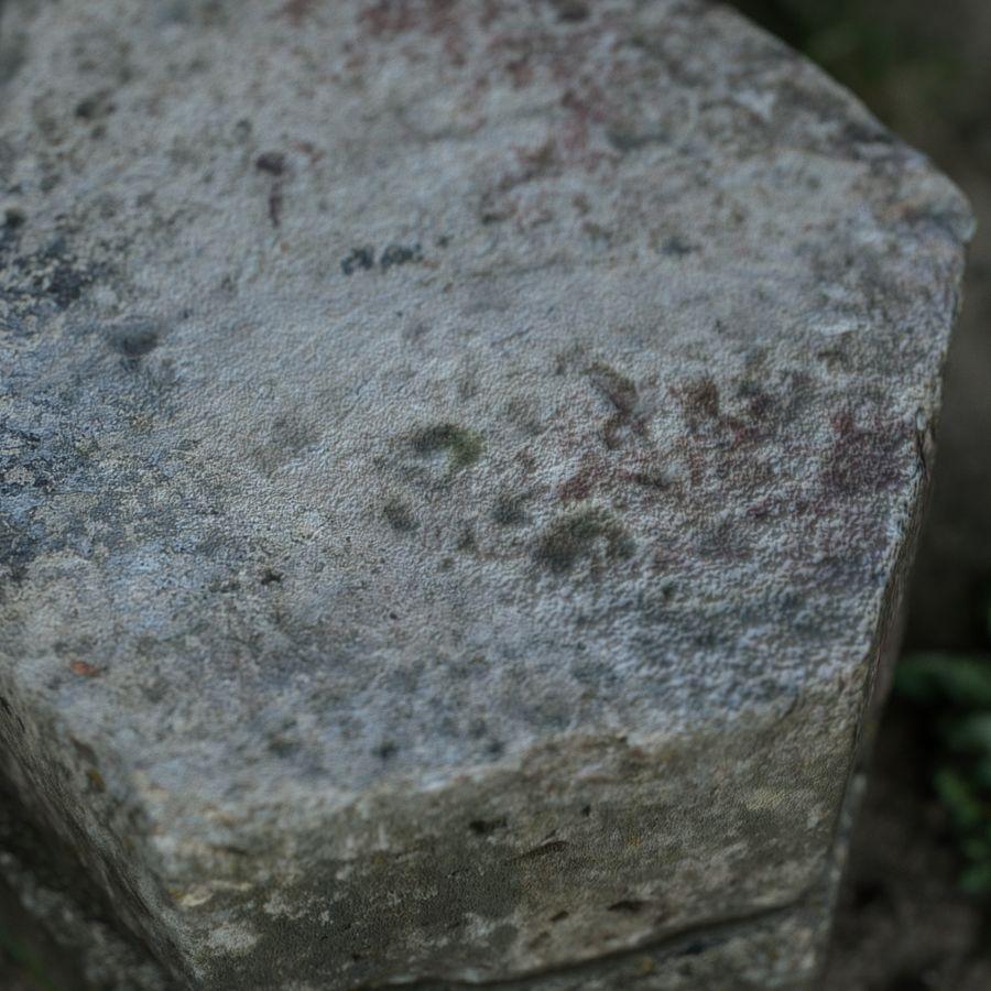 Каменная трава 3d Scan royalty-free 3d model - Preview no. 13
