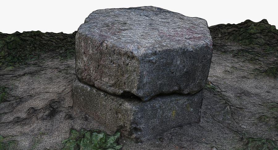 Каменная трава 3d Scan royalty-free 3d model - Preview no. 31