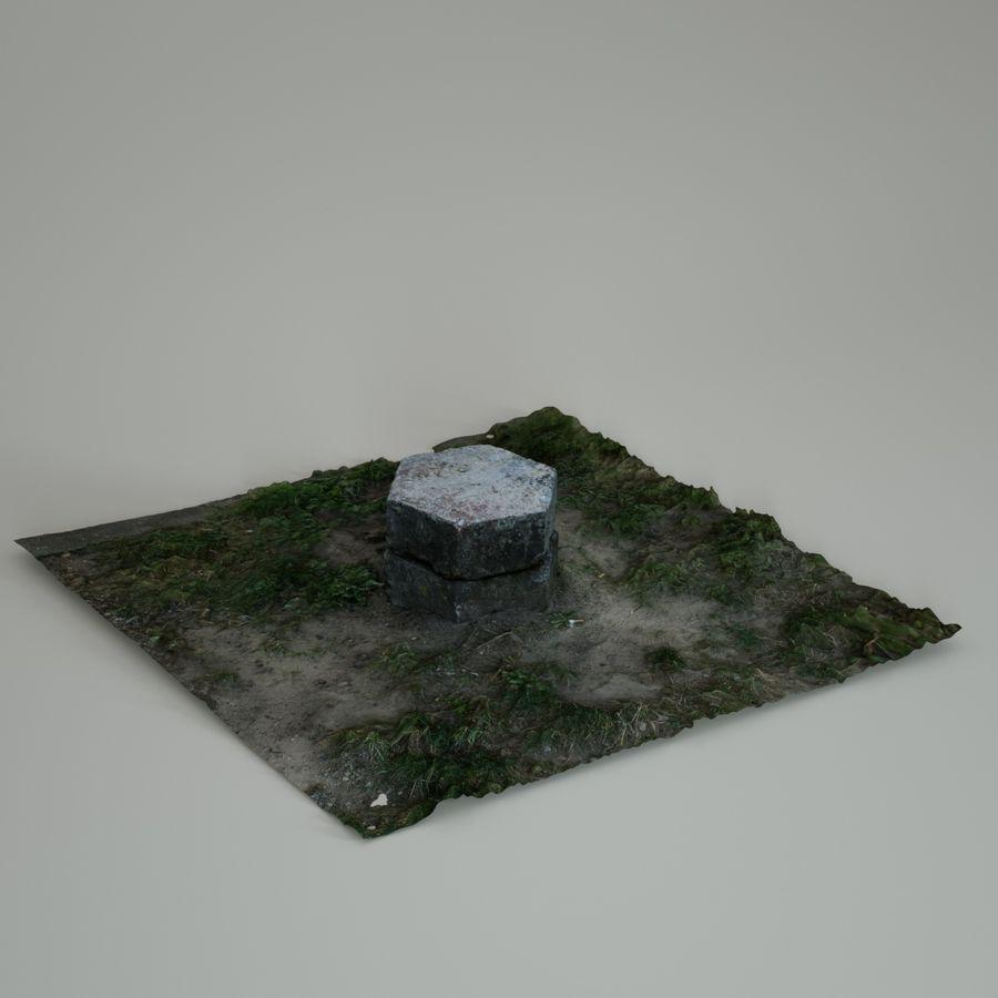 Каменная трава 3d Scan royalty-free 3d model - Preview no. 18