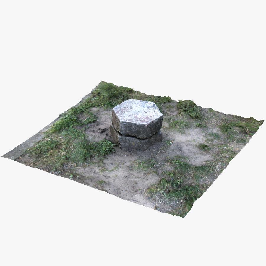 Каменная трава 3d Scan royalty-free 3d model - Preview no. 4