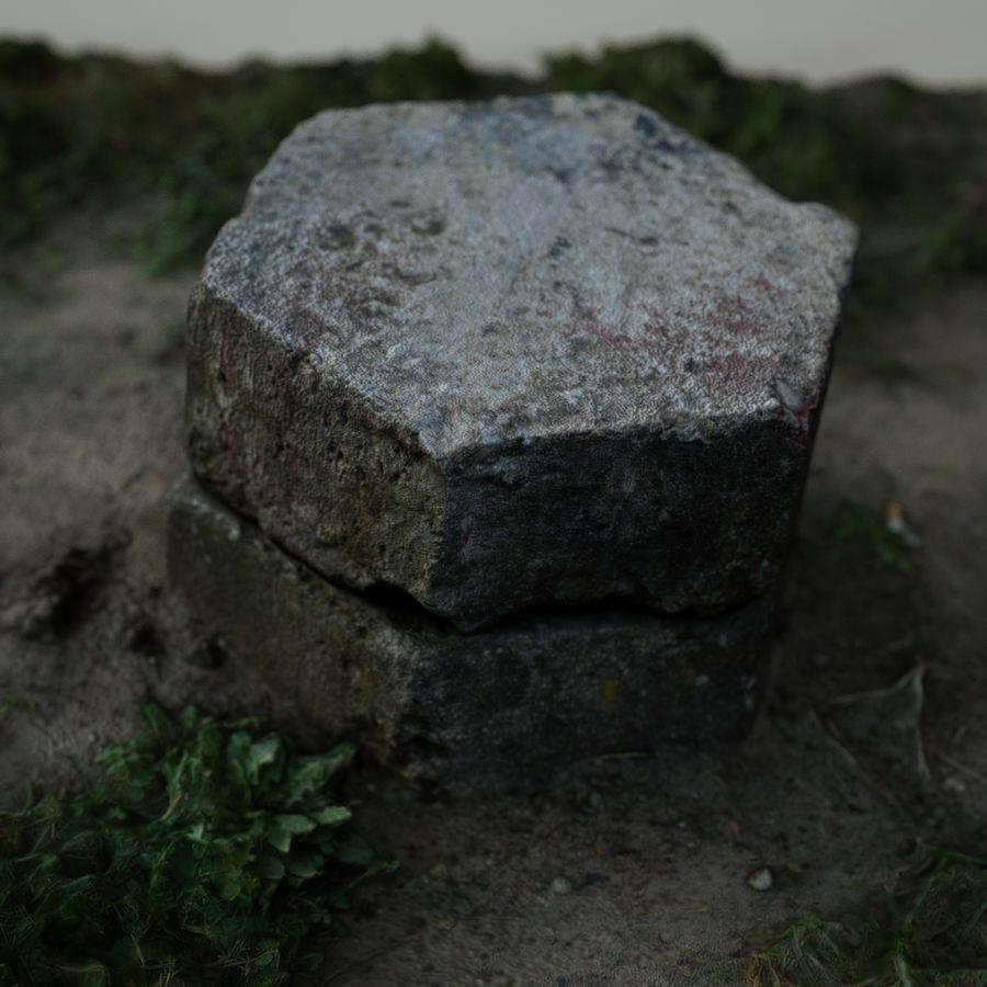 Каменная трава 3d Scan royalty-free 3d model - Preview no. 11