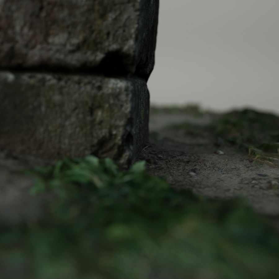 Каменная трава 3d Scan royalty-free 3d model - Preview no. 10