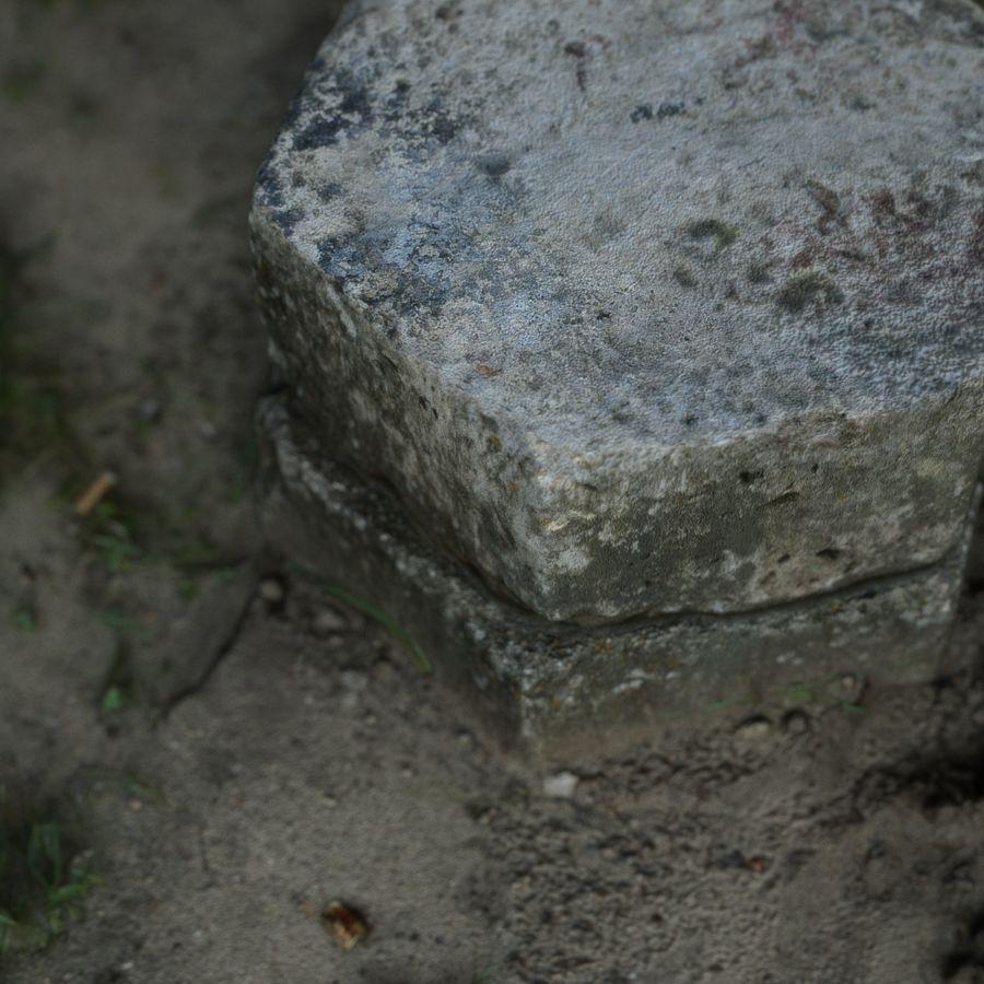 Каменная трава 3d Scan royalty-free 3d model - Preview no. 12
