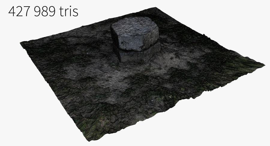 Каменная трава 3d Scan royalty-free 3d model - Preview no. 28
