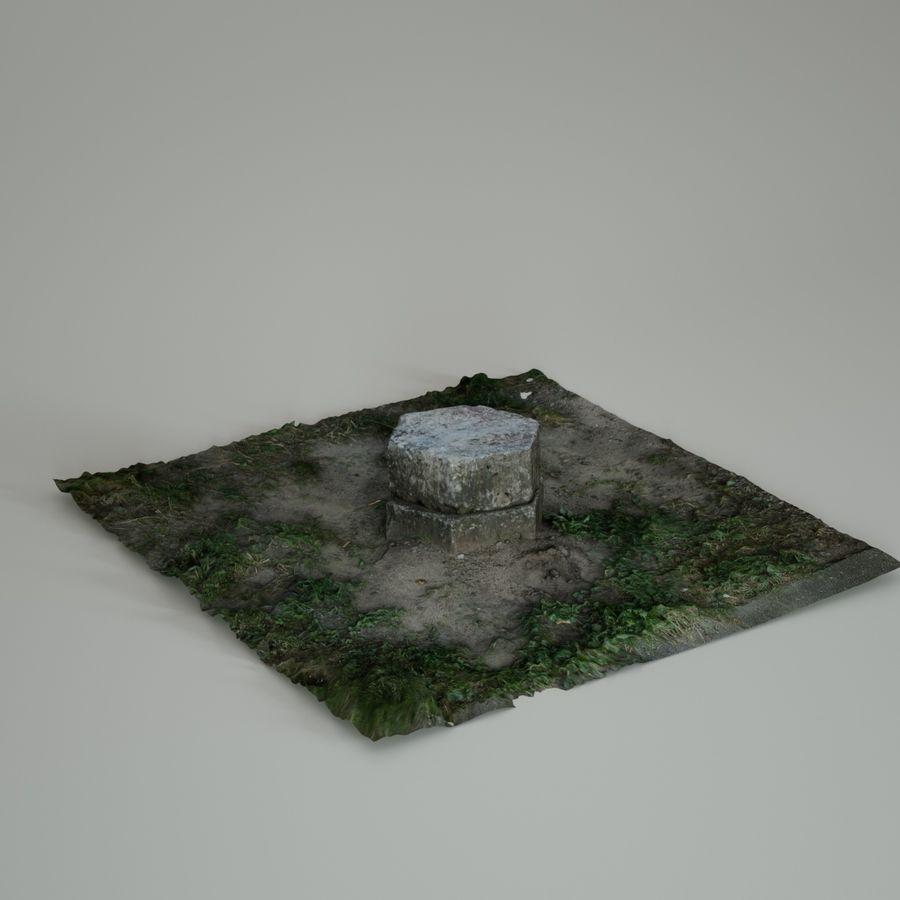 Каменная трава 3d Scan royalty-free 3d model - Preview no. 20