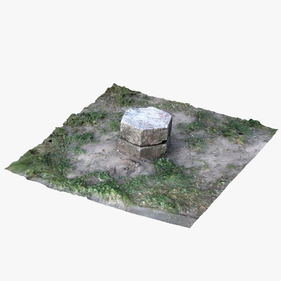 Каменная трава 3d Scan royalty-free 3d model - Preview no. 5
