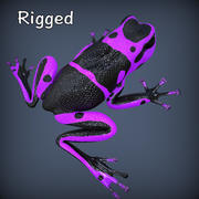 Poison Purple Frog Rigged 3d model