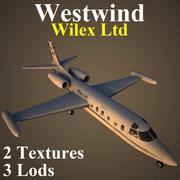 WW24 VIP 3d model