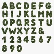 잎 알파벳 3d model