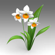 Flor de Narciso 3d model