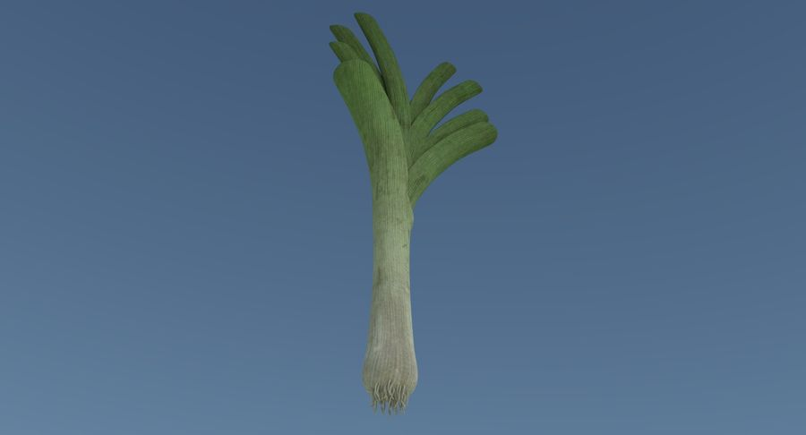 Leek one royalty-free 3d model - Preview no. 3