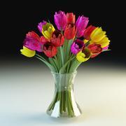 튤립 꽃다발 tulipa 3d model