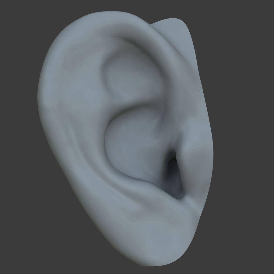 耳 royalty-free 3d model - Preview no. 2