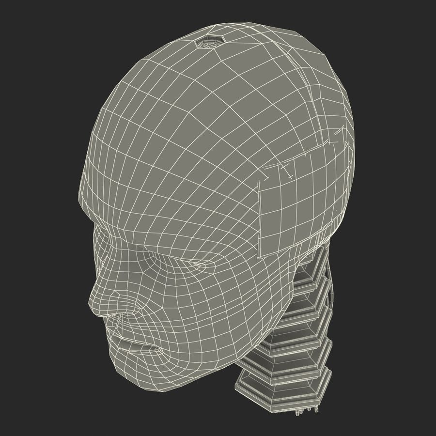 Man Crash Test Dummy Head royalty-free 3d model - Preview no. 24