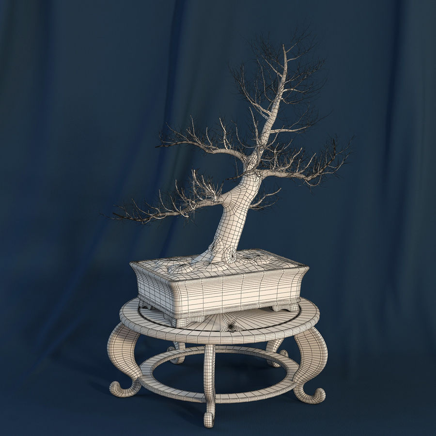 Bonsai Tree royalty-free 3d model - Preview no. 8