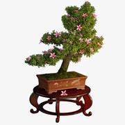 Árvore bonsai 3d model
