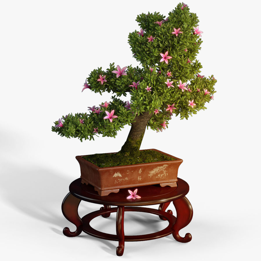 Bonsai Tree royalty-free 3d model - Preview no. 2