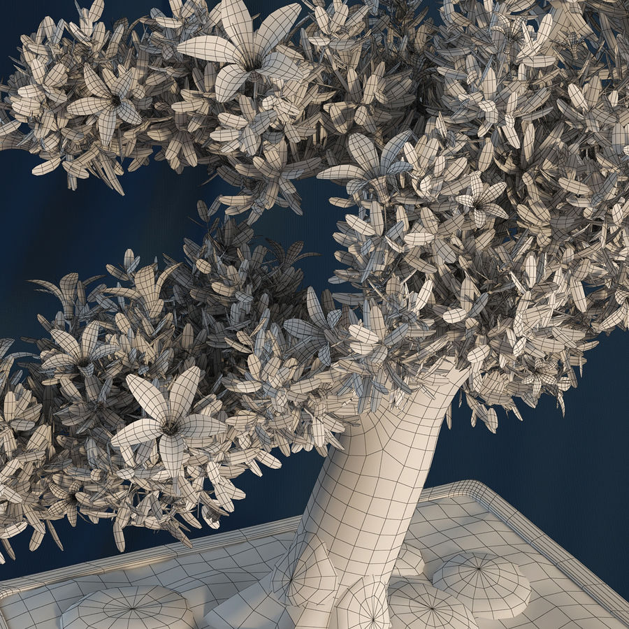 Bonsai Tree royalty-free 3d model - Preview no. 7