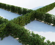 Generic Hedge - Big 3d model