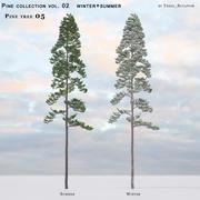 Pine-tree_05 (vol_02) estate + inverno 3d model