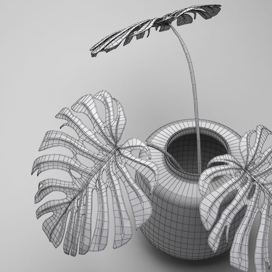 Monstera Plant royalty-free 3d model - Preview no. 11