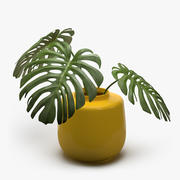 Monstera växt 3d model