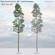 Pine-tree_01 (vol_02) Sommer + Winter 3d model