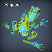 Amoeba_Poison Frog 3d model