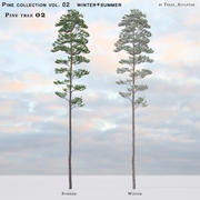 Pine-tree_02(vol_02)夏季+冬季 3d model