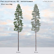 Pine-tree_04 (vol_02) estate + inverno 3d model
