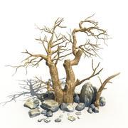 Suche drzewo i skała 01 3d model