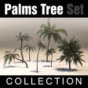 Conjunto de coleta Palms Tree 3d model