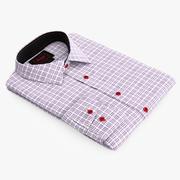 Shirt 2 3d model