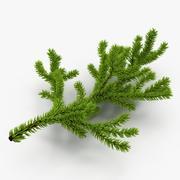 クリスマスのモミの枝 3d model