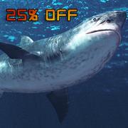 Мегалодон / Белая Акула высокого поли 3d model